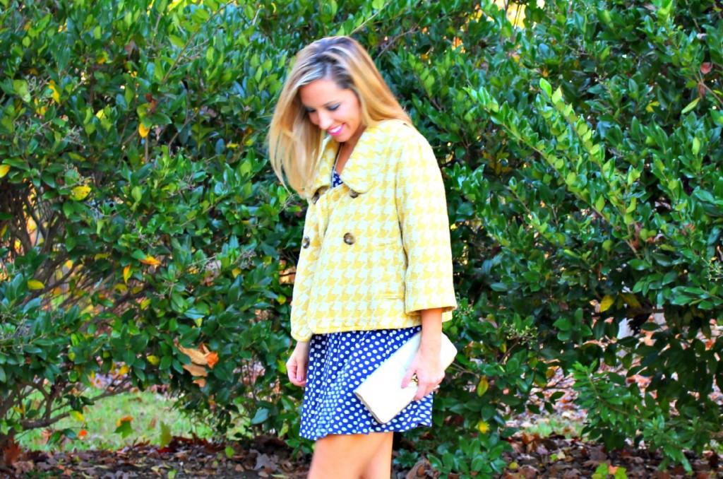 yellowjacket